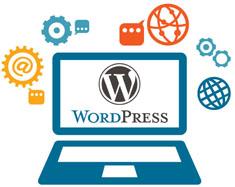 Word-Press-Website-naeemrajani