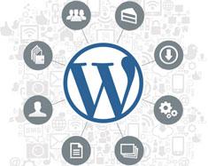 Wordpress-Design-naeemrajani