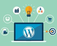 Wordpress-Website-naeemrajani
