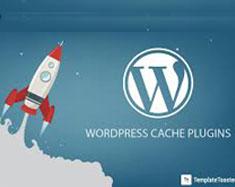 Wordpress-naeemrajani