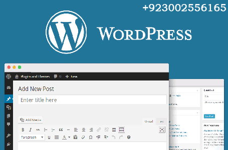 wordpress develpment trainingr